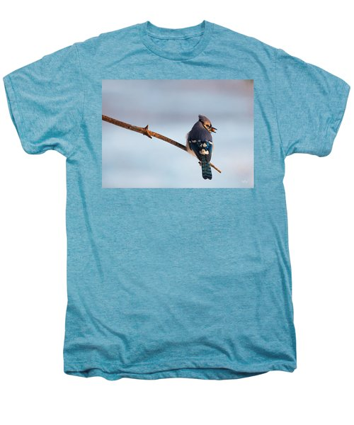 Blue Jay With Nuts Men's Premium T-Shirt by Everet Regal