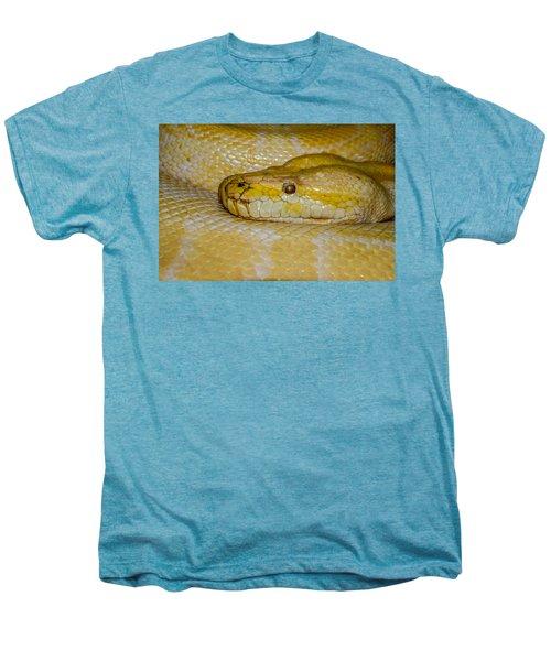 Burmese Python Men's Premium T-Shirt