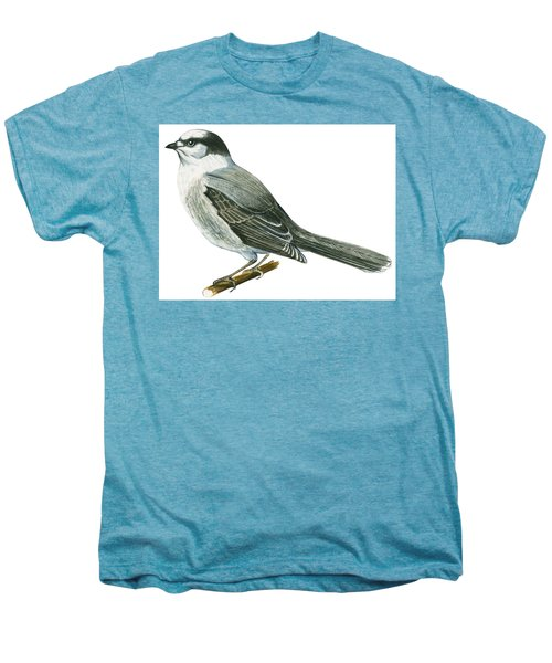 Canada Jay Men's Premium T-Shirt by Anonymous