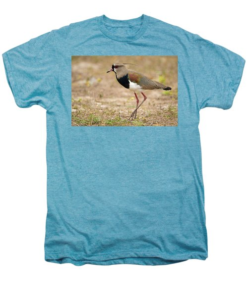 Close-up Of A Southern Lapwing Vanellus Men's Premium T-Shirt