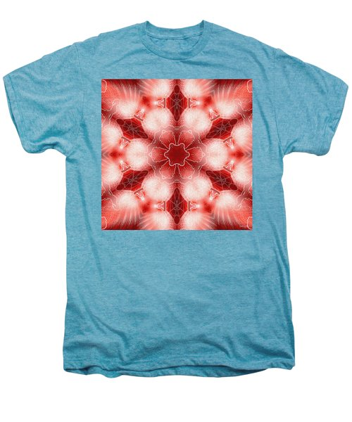 Cosmic Spiral Kaleidoscope 22 Men's Premium T-Shirt