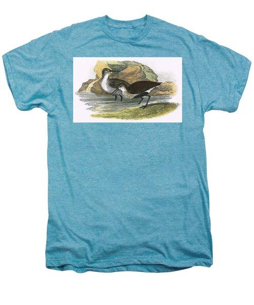 Dunlin Men's Premium T-Shirt