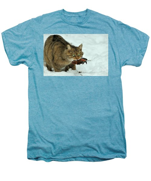 European Wildcat Men's Premium T-Shirt