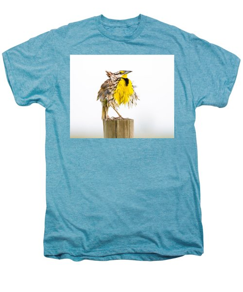 Flluffy Meadowlark Men's Premium T-Shirt by Bill Swindaman