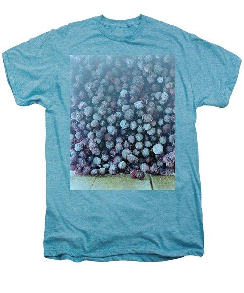 Frozen Blueberries Men's Premium T-Shirt