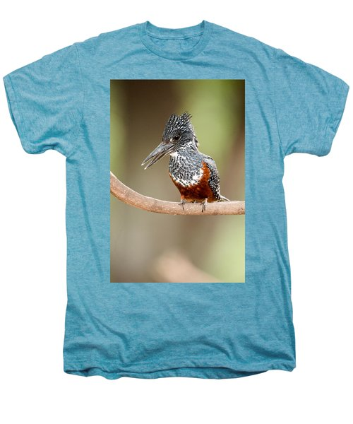 Giant Kingfisher Megaceryle Maxima Men's Premium T-Shirt by Panoramic Images