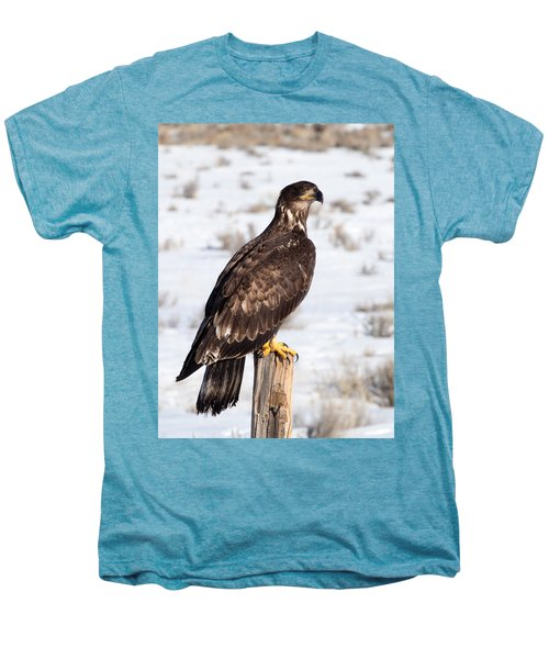 Golden Eagle On Fencepost Men's Premium T-Shirt