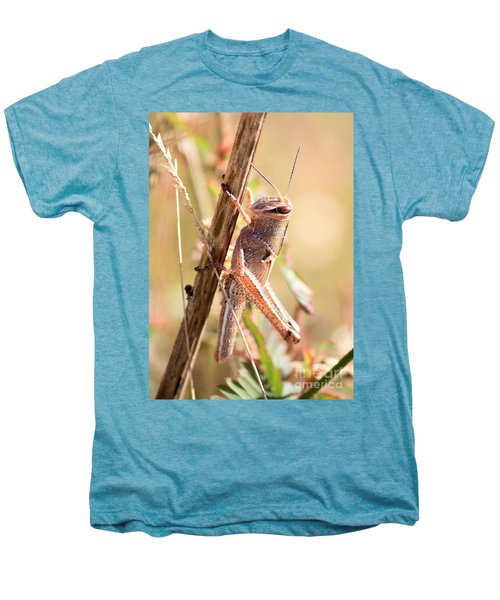 Grasshopper In The Marsh Men's Premium T-Shirt