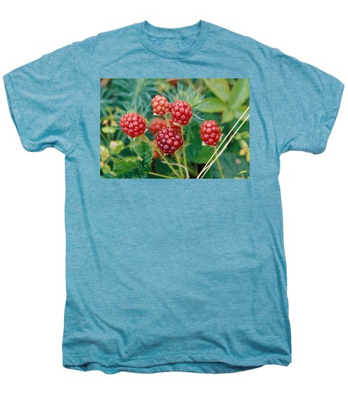Highbush Blackberry Rubus Allegheniensis Grows Wild In Old Fields And At Roadsides Men's Premium T-Shirt by Anonymous