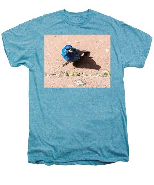 Indigo Bunting Men's Premium T-Shirt by Jon Woodhams