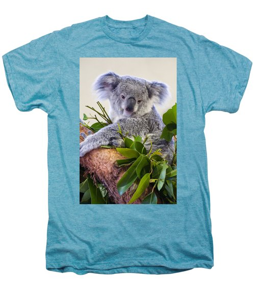 Koala On Top Of A Tree Men's Premium T-Shirt