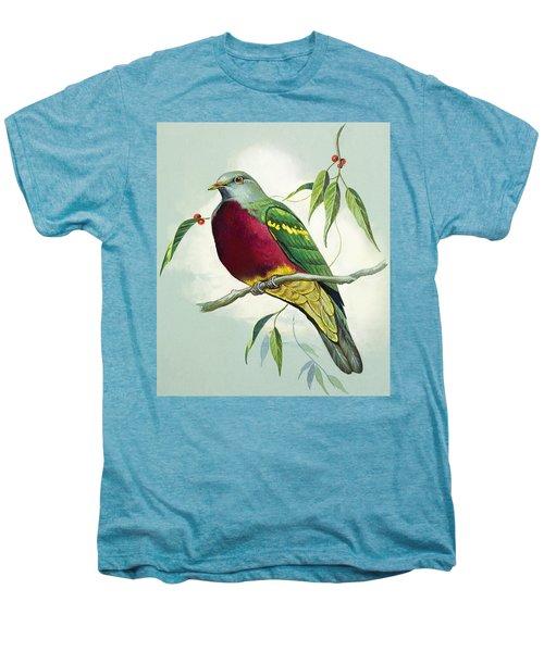Magnificent Fruit Pigeon Men's Premium T-Shirt