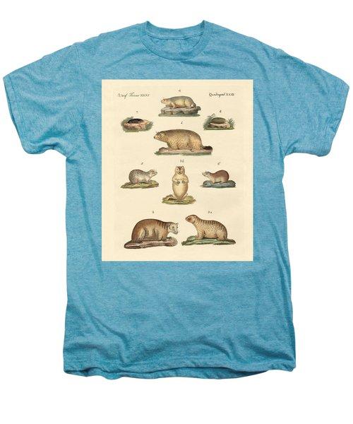 Marmots And Moles Men's Premium T-Shirt by Splendid Art Prints