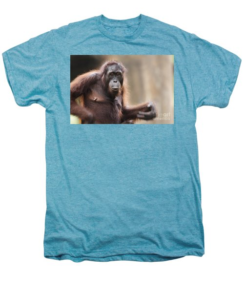 Orangutan Men's Premium T-Shirt by Richard Garvey-Williams