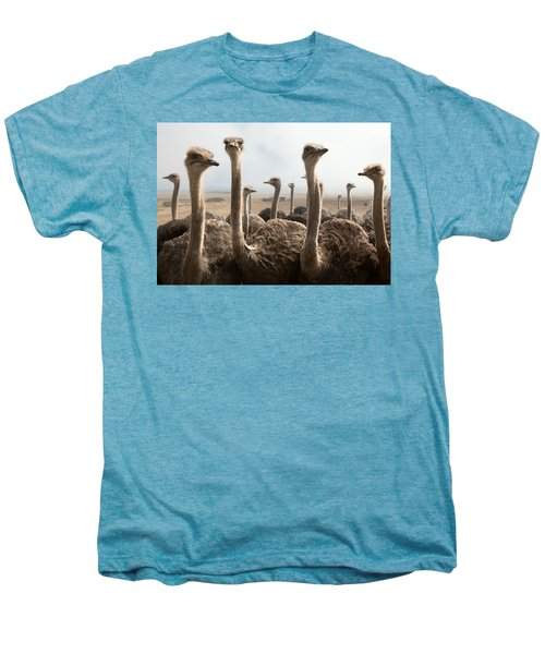 Ostrich Heads Men's Premium T-Shirt