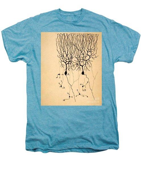 Purkinje Cells By Cajal 1899 Men's Premium T-Shirt