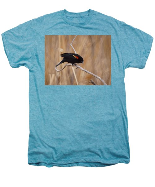 Red Winged Blackbird 1 Men's Premium T-Shirt