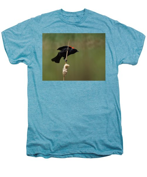 Red Winged Blackbird 3 Men's Premium T-Shirt