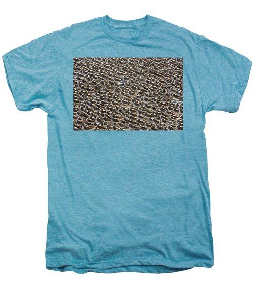Semipalmated Sandpipers Sleeping Men's Premium T-Shirt