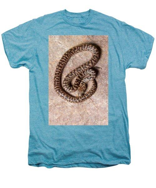 Spotted Python Antaresia Maculosa Top Men's Premium T-Shirt