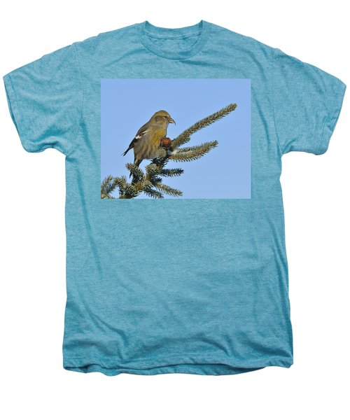 Spruce Cone Feeder Men's Premium T-Shirt by Tony Beck