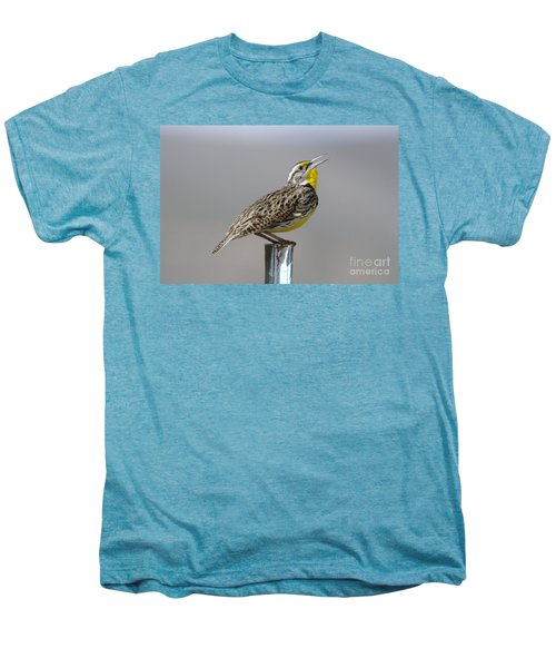 The Meadowlark Sings  Men's Premium T-Shirt by Jeff Swan