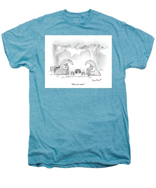Two Anteaters On A Picnic Wait For Ants To Come Men's Premium T-Shirt