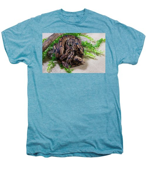 Two Burmese Pythons Python Bivittatus Men's Premium T-Shirt
