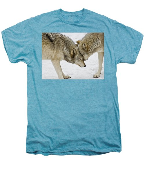 Two Wolves In  A Staredown Men's Premium T-Shirt
