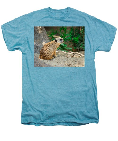 Watchful Meerkat Men's Premium T-Shirt by Jon Woodhams