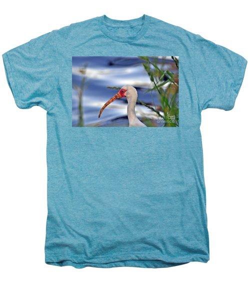 Intriguing Ibis Men's Premium T-Shirt