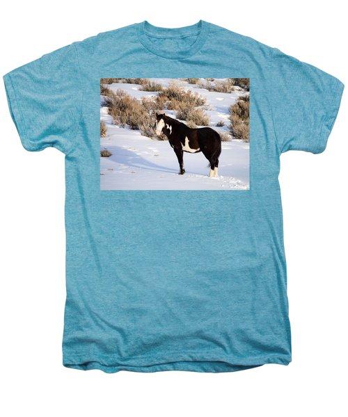 Wild Horse Stallion Men's Premium T-Shirt