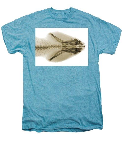 Eastern Diamondback Rattlesnake Head Men's Premium T-Shirt by Ted Kinsman