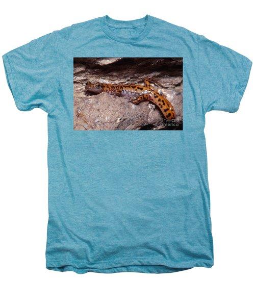 Cave Salamander Men's Premium T-Shirt by Dante Fenolio
