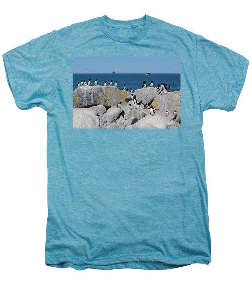 Auk Island Men's Premium T-Shirt by Bruce J Robinson