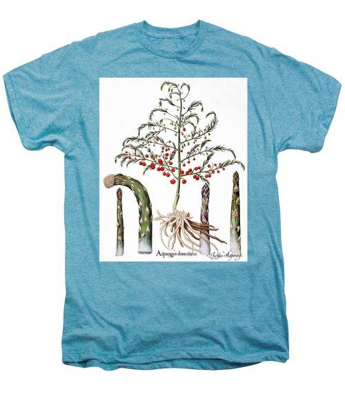 Botany: Asparagus, 1613 Men's Premium T-Shirt by Granger