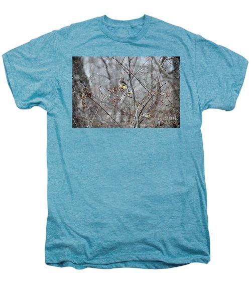 Cedar Wax Wing 3 Men's Premium T-Shirt by David Arment