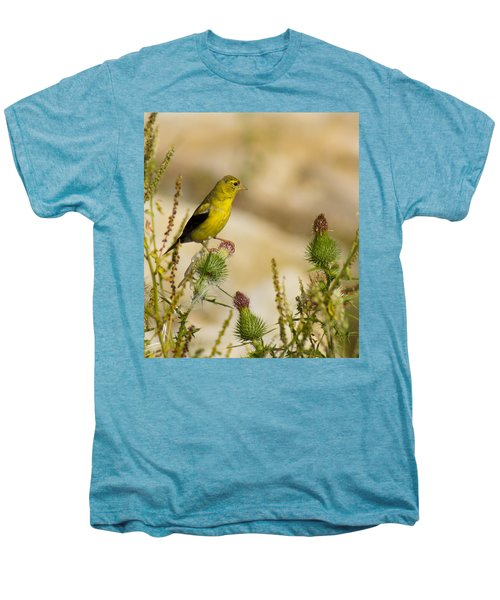 Goldfinch On Lookout Men's Premium T-Shirt by Bill Pevlor