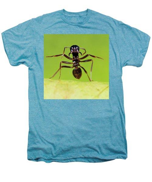 Japanese Slave-making Ant Polyergus Men's Premium T-Shirt by Satoshi Kuribayashi