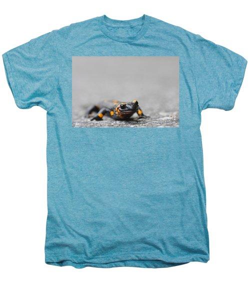Salamander Men's Premium T-Shirt