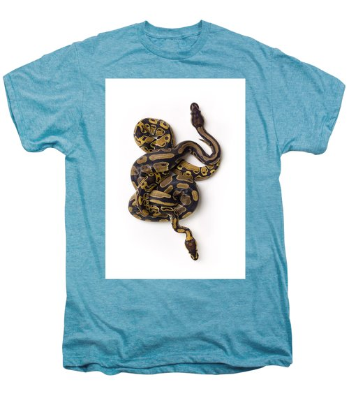 Two Ball Python Snakes Intertwined Men's Premium T-Shirt by Corey Hochachka