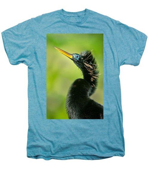 Anhinga Anhinga Anhinga, Tortuguero Men's Premium T-Shirt