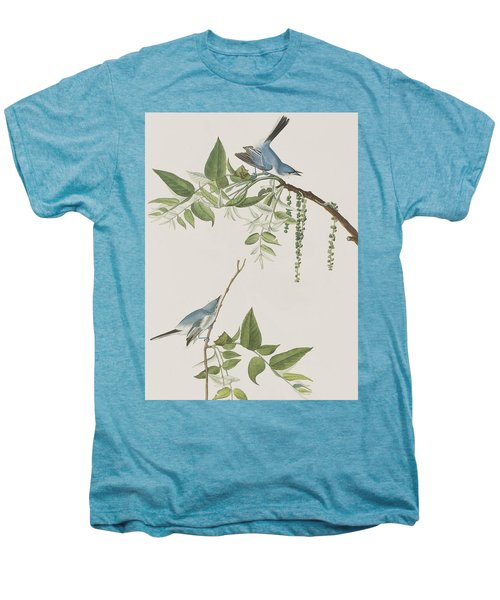 Blue Grey Flycatcher Men's Premium T-Shirt by John James Audubon