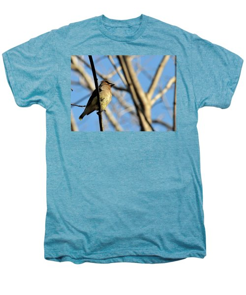 Cedar Wax Wing Men's Premium T-Shirt by David Arment