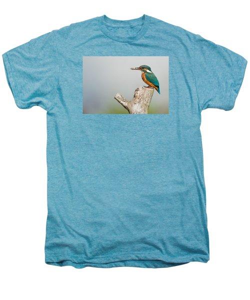 Kingfisher Men's Premium T-Shirt by Paul Neville