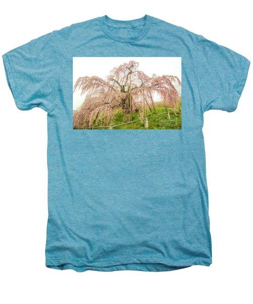 Miharu Takizakura Weeping Cherry02 Men's Premium T-Shirt