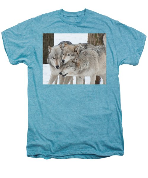 Three Wolves Are A Crowd Men's Premium T-Shirt