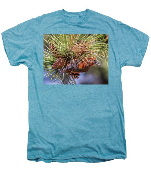 Red Crossbill Men's Premium T-Shirt by Michael Cunningham