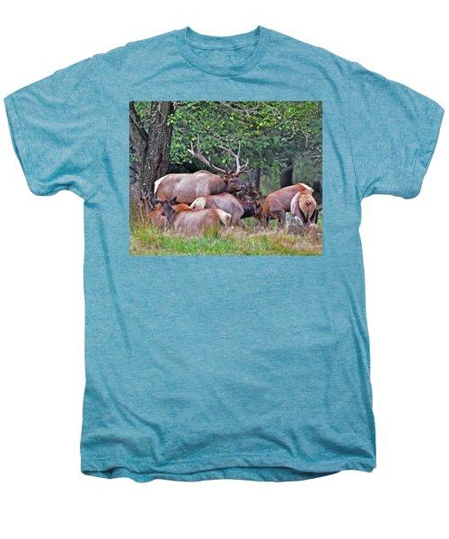 Royal Roosevelt Bull Elk Men's Premium T-Shirt