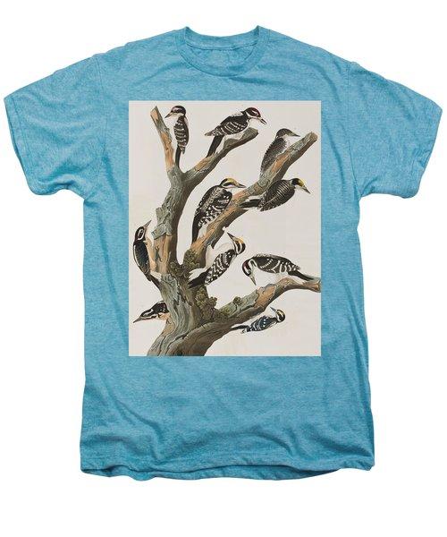 Woodpeckers Men's Premium T-Shirt by John James Audubon